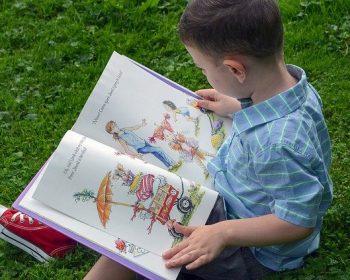 menino-lendo-livro-com-imagens-sentado-na-grama