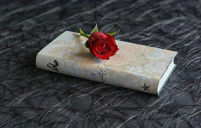 livro-fechado-com-rosa-vermelha-em-cima